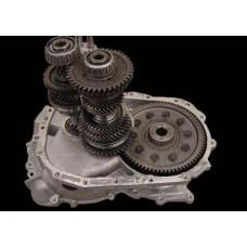 Standard Trans Build Service - EVO 4-7